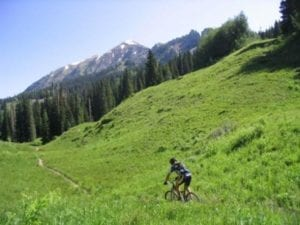 Dyke Rider